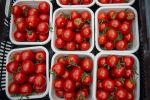 Pomidor satışı, arxiv şəkli