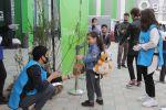 В рамках Зеленого марафона жителям Шамкира розданы саженцы деревьев