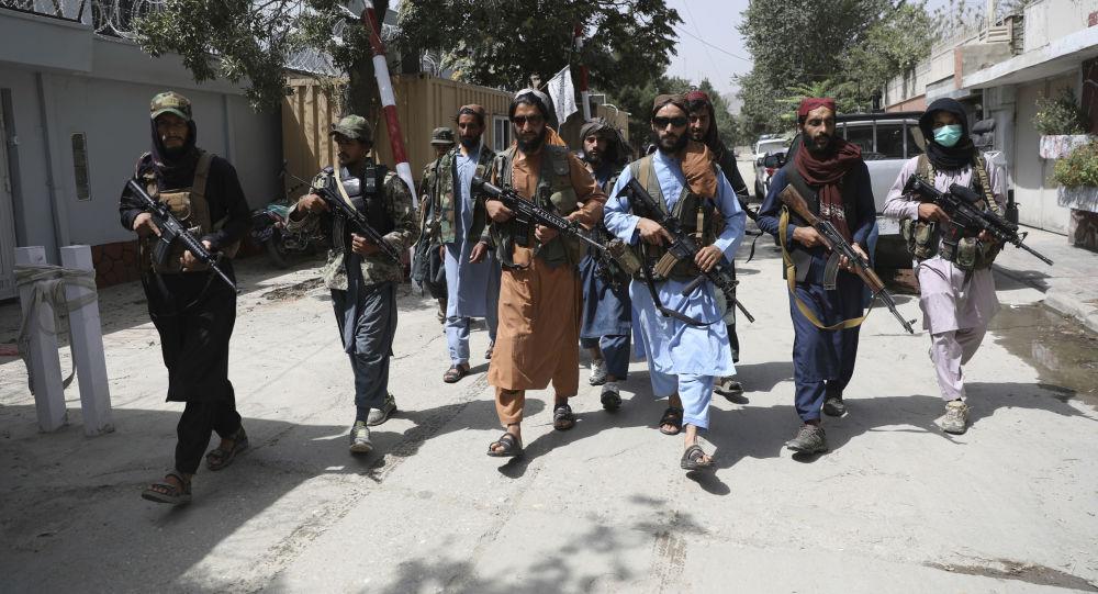Əfqanıstanda Taliban (Rusiyada və digər ölkələrdə qadağan olunmuş terror qruplaşması ) hərəkatının üzvləri, arxiv şəkli