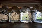 Медицинские пиявки, фото из архива