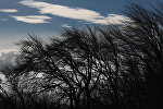 Ветер, архивное фото