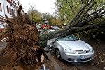 Последствия урагана Герварт в Европе