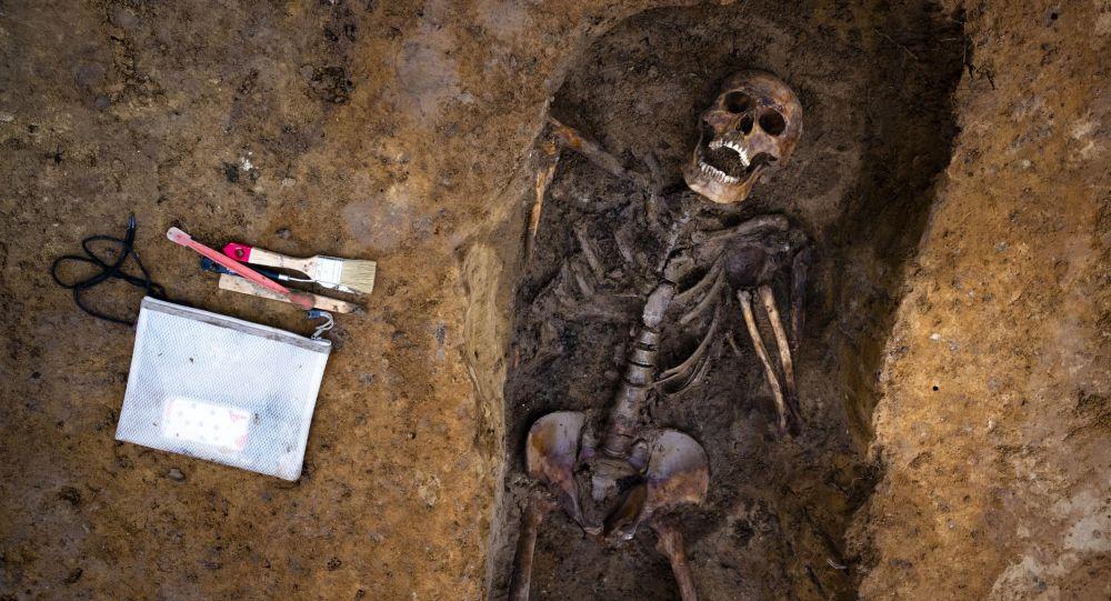 İnsan skeleti, arxiv şəkli