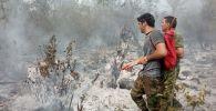 Пожар в предгорных лесах