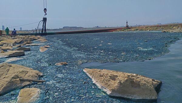 Ситуация на озере Беюкшор - Sputnik Азербайджан