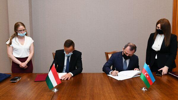 Главы МИД Азербайджана и Венгрии  - Sputnik Азербайджан