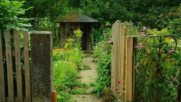 Сад, фото из архива - Sputnik Azərbaycan