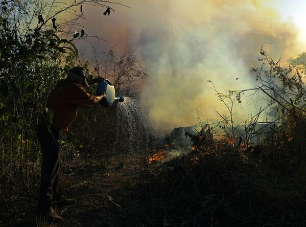 Фермер тушит пожар в заповеднике Амазонии, Бразилия  - Sputnik Азербайджан