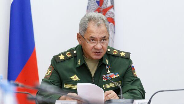 Министр обороны РФ Сергей Шойгу, фото из архива - Sputnik Азербайджан