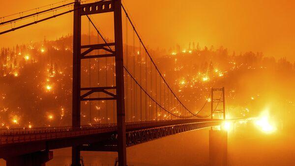 Kaliforniyada meşə yanğınları - Sputnik Azərbaycan
