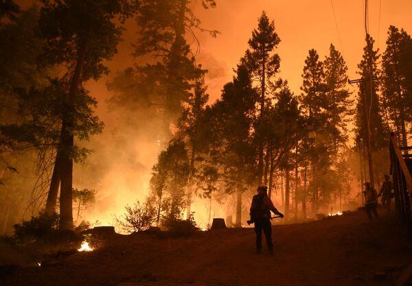 Пожарные на месте лесного пожара в штате Калифорния - Sputnik Азербайджан