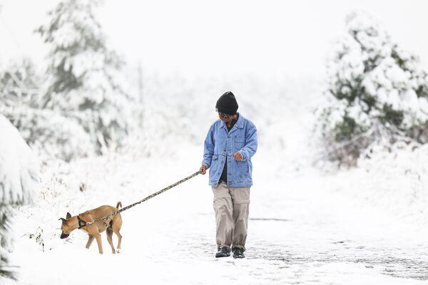 Женщина гуляет с собакой после снегопада в штате Колорадо - Sputnik Азербайджан