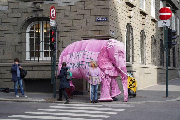 Участники климатического движения Extinction Rebellion в костюме слона во время акции протеста против нефтяной политики правительства Норвегии - Sputnik Азербайджан