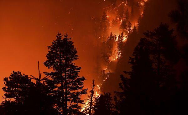 Лесной пожар в Лос-Анджелесе, Калифорния - Sputnik Азербайджан