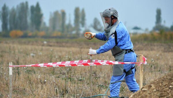 Сотрудник Национального агентства по разминированию территорий Азербайджана (ANAMA) - Sputnik Азербайджан
