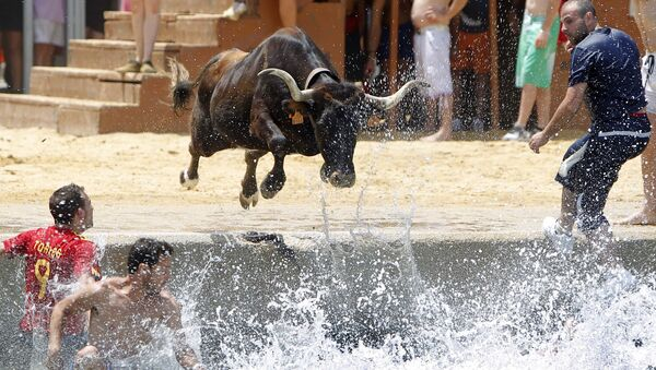 Бык прыгает в море во время испанского фестиваля Bous a la mar - Sputnik Azərbaycan