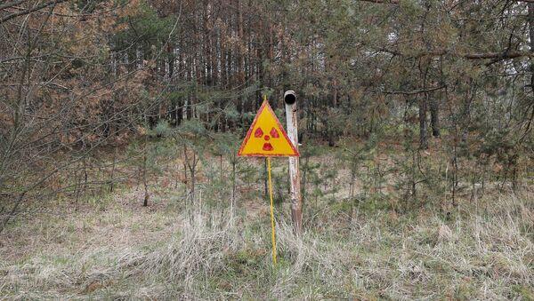 Радиоактивный знак, фото из архива - Sputnik Азербайджан