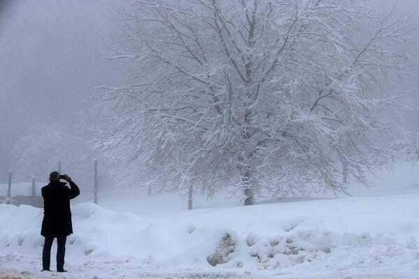 Мужчина фотографирует покрытое снегом дерево на Корсике  - Sputnik Азербайджан