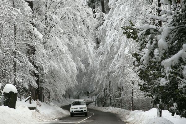 A car drives by Vizzavona forest covered with snow on January 11, 2021 on the French Mediterranean island of Corsica, following heavy snow falls over southern Europe.  - Sputnik Азербайджан