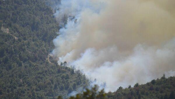 Погодные условия мешают тушению пожара в Гирканском национальном парке  - Sputnik Азербайджан