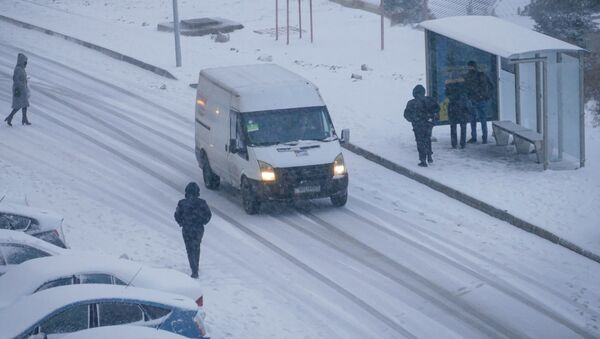Первый снег в Баку  - Sputnik Azərbaycan