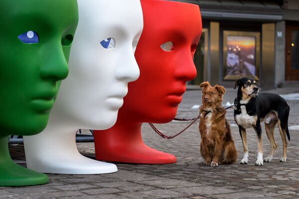 Собаки, ожидающие своего хозяина рядом с пластиковыми сиденьями, изображающими лица цвета итальянского флага - Sputnik Азербайджан