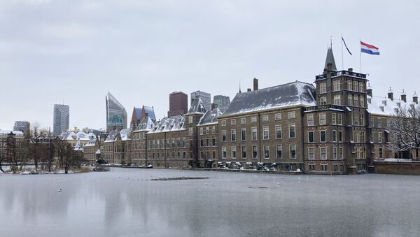Здание парламента Нидерландов в Гааге, фото из архива - Sputnik Азербайджан