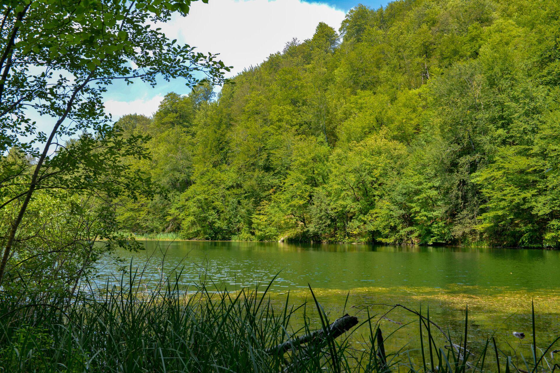 Место, где душа отдыхает: в горных лесах Шабрана таится загадочное озеро Анбиль - Sputnik Азербайджан, 1920, 25.03.2021