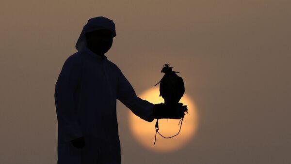 Арабский охотник со своим соколом, фото из архива - Sputnik Азербайджан