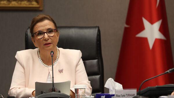 Министр торговли Турции Рухсар Пекджан, фото из архива - Sputnik Азербайджан