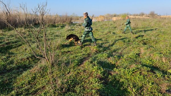 На территории Горадизского пограничного отряда у села Беюк Бахманлы Физулинского района - Sputnik Азербайджан