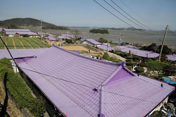 Дома на острове Фиолетовый в провинции Южная Чолла в Южной Корее - Sputnik Азербайджан