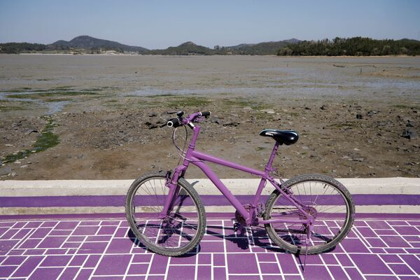 Велосипед на территории острова Фиолетовый в провинции Южная Чолла в Южной Корее - Sputnik Азербайджан