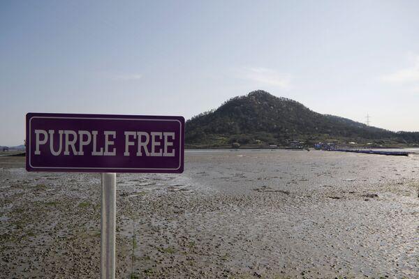 Указатель на территории Фиолетового острова в провинции Южная Чолла в Южной Корее - Sputnik Азербайджан