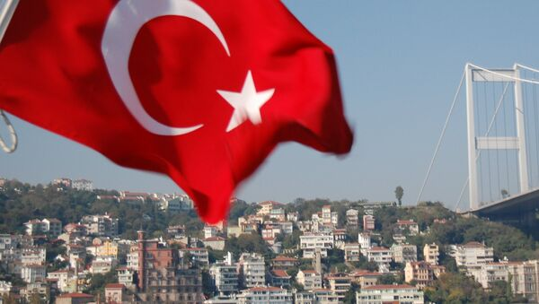 Мост через Босфор и флаг Турции - Sputnik Азербайджан