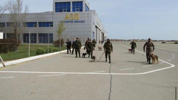 Zabrat Hava Limanı ərazisində təlim - Sputnik Азербайджан