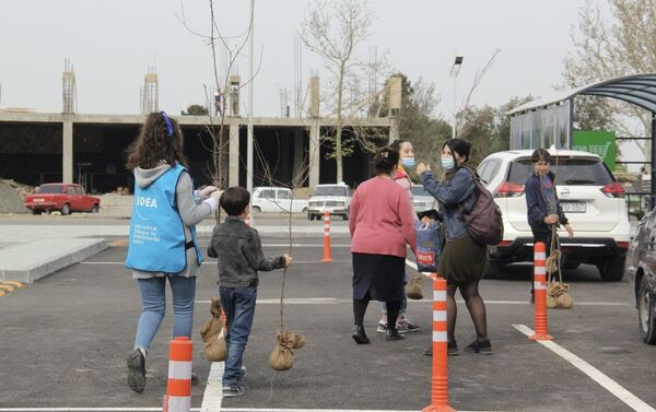 В рамках Зеленого марафона жителям Шамкира розданы саженцы деревьев  - Sputnik Азербайджан