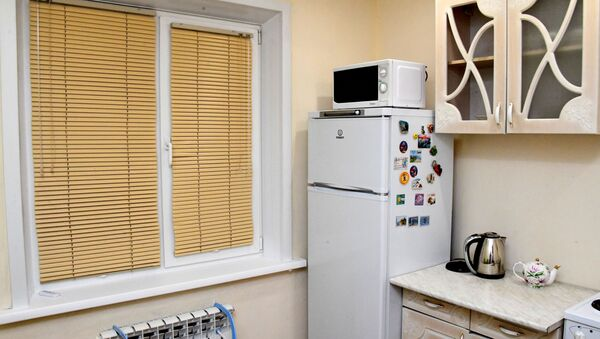 Холодильник на кухне, фото из архива - Sputnik Азербайджан