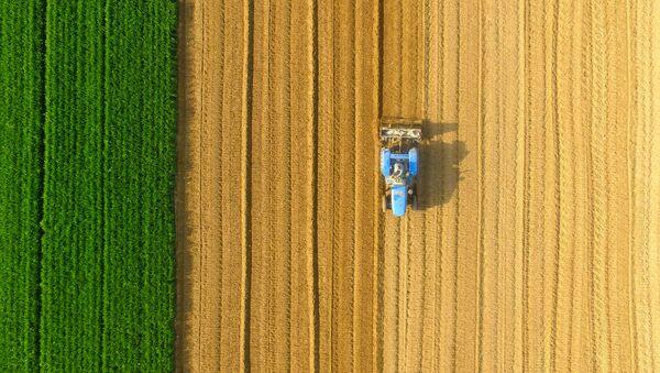Трактор обрабатывает землю, фото из архива  - Sputnik Азербайджан