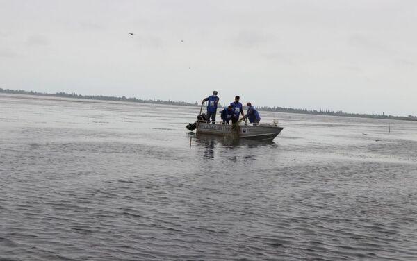 Мероприятие по очистке территории залива Малый Гызылагач в рамках акции Чистые водоемы - Sputnik Азербайджан