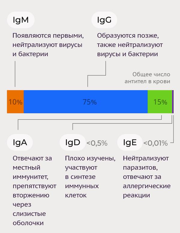 Тесты на антитела к коронавирусу-3 - Sputnik Азербайджан