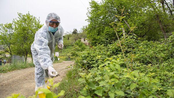 Меры против распространения опасного заболевания среди диких и бездомных животных пока проводятся на территории Ходжавендского района - Sputnik Азербайджан