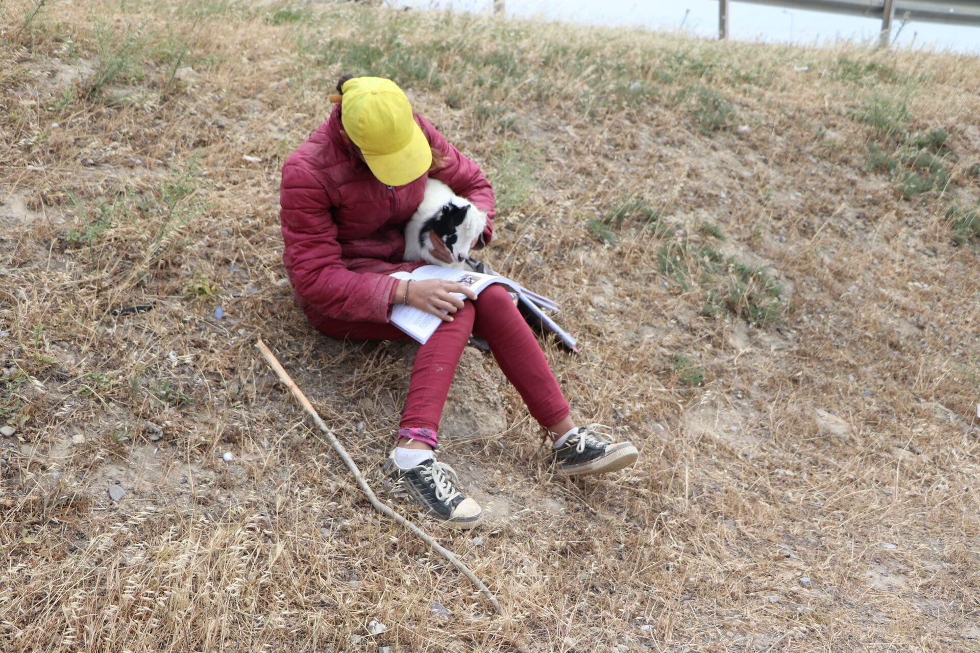 Жизнь на обочине: девочка-подросток пасет скот, чтобы содержать семью - Sputnik Азербайджан, 1920, 12.06.2021