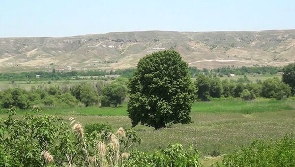 Tinli kəndində - Sputnik Азербайджан