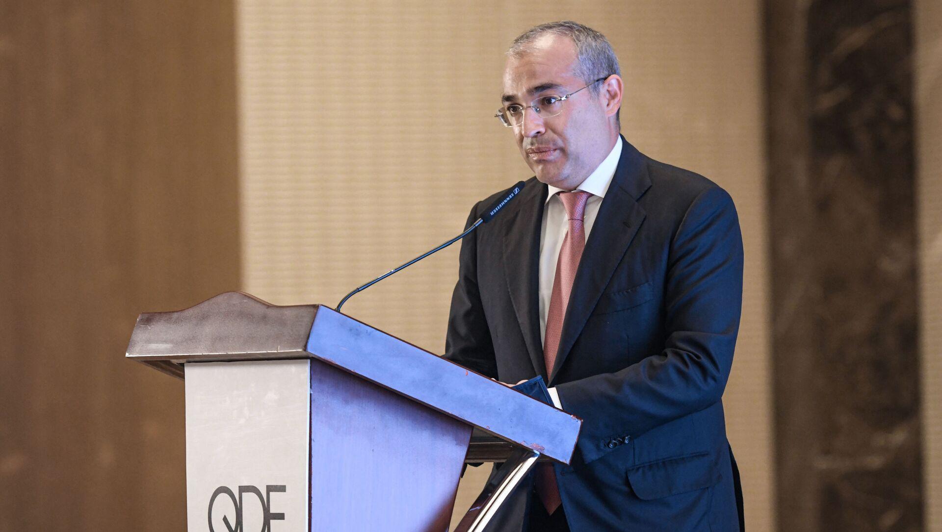 Министр экономики Микаил Джаббаров, 30 июня 2021 года - Sputnik Азербайджан, 1920, 16.07.2021