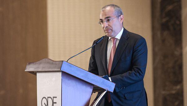 Министр экономики Микаил Джаббаров, 30 июня 2021 года - Sputnik Азербайджан