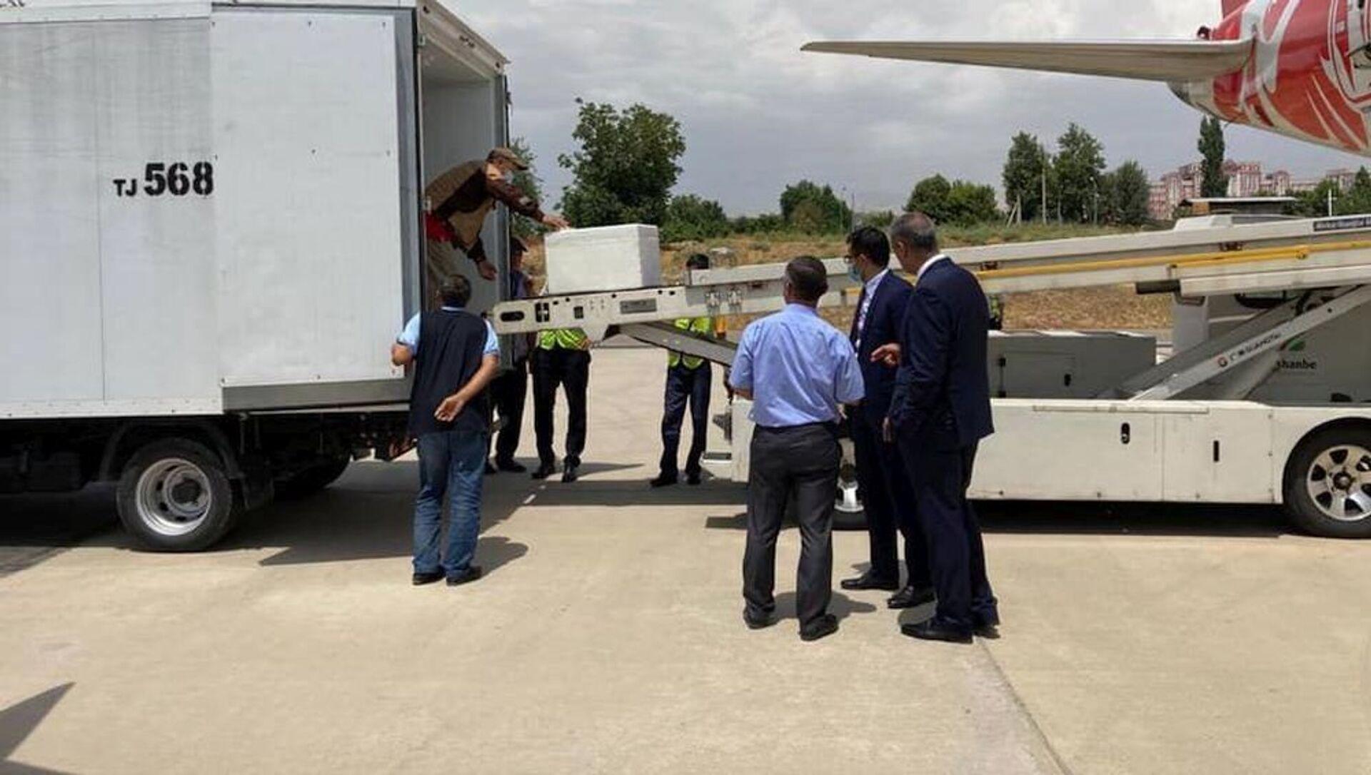 Гумпомощь из 40 тыс. доз вакцины AstraZeneca доставлена в Душанбе самолетом - Sputnik Азербайджан, 1920, 20.07.2021