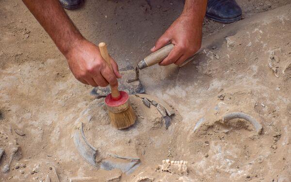Археологическо-спасательные работы на территории государственного заповедника Кешикчидаг в Агстафинском районе страны - Sputnik Азербайджан