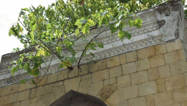 Mingəçevirdə əncir ağacı - Sputnik Azərbaycan