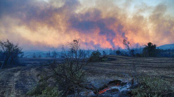 Лесной пожар в Турции - Sputnik Азербайджан